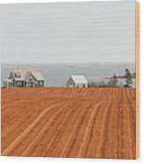 Prince Edward Island Fields 5668 Wood Print