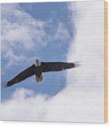 Prince Rupert Eagle Flight Wood Print