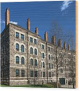 Princeton University Dod Hall Wood Print