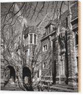 Princeton University Foulke And Henry Halls Archway Wood Print