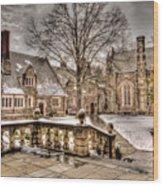 Snow / Winter Princeton University Wood Print