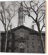 Princeton University Nassau Hall  Wood Print
