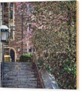 Princeton University Old Stairway Wood Print