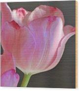 Prismatic Beauty Wood Print