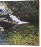 Pristine Stream Pool Wood Print
