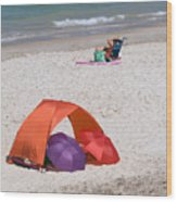 Privacy For Two At The Beach Wood Print