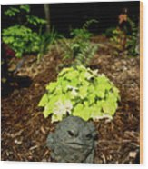 Private Garden Go Away Wood Print