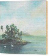 Private Island Wood Print