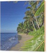 Private Molokai Beach Wood Print