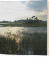 Private Palm Island Wood Print