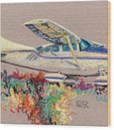 Private Plane Wood Print