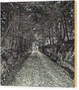 Private Road B Wood Print