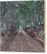 Private Road Wood Print