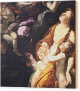 Procaccini's The Ecstasy Of The Magdalen Wood Print