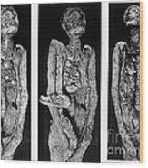 Processes Of Mummification Wood Print