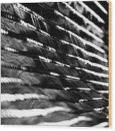 Procession - 1 Of 2 Wood Print