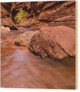 Professor Creek Canyon 2 Wood Print