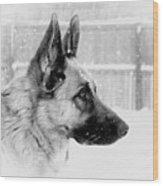 Profile Of A German Shepherd Wood Print
