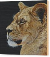 Profile Of A Lioness Wood Print