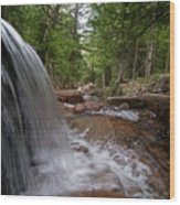Profile Of The Falls Wood Print