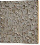 Proliferate Wood Print