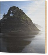 Proposal Rogue Wave Rock - Oregon Coast Wood Print