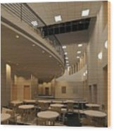 Proposed Performing Arts Lobby Wood Print