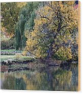 Prosser - Autumn Reflection With Geese Wood Print