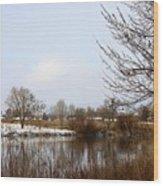 Prosser Winter - Brown And Burgundy Wood Print
