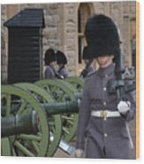 Protecting The Tower Of London Wood Print