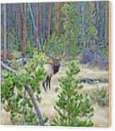 Protective Elk Wood Print