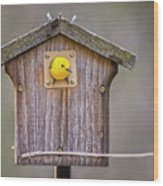 Prothonotary Warbler House Wood Print