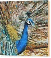Proud As A Peacock Wood Print