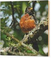 Proud Bird Wood Print