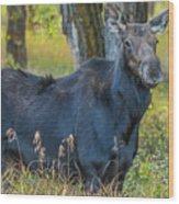 Proud Mama Moose Wood Print