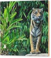 Proud Tiger Wood Print