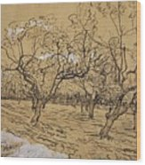Provencal Orchard Arles  March - April 1888 Vincent Van Gogh 1853  1890 Wood Print