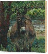 Provence Donkey Wood Print