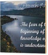 Proverbs114 Wood Print