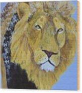 Prowling Lion Wood Print