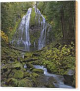 Proxy Falls Wood Print