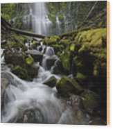 Proxy Falls Oregon 5 Wood Print