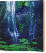 Proxy Waterfalls Wood Print