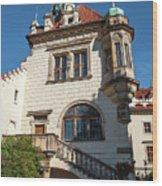 Pruhonice Castle Side View Wood Print