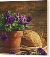 Pruning Purple Pansies Wood Print