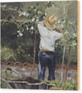 Pruning Time In Umbria Wood Print