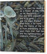 Psalm 103 Temporary And Eternal Wood Print