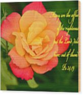 Psalm 34 V 19 Wood Print