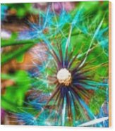 Psychedelic Dandelion Wood Print