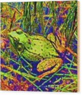 Psychedelic Frog  Wood Print